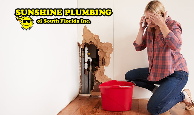 Emergency Plumber in Hollywood FL